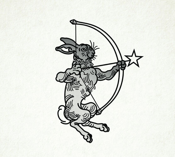Foggyturtle-avatar