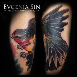Evgenia Sin