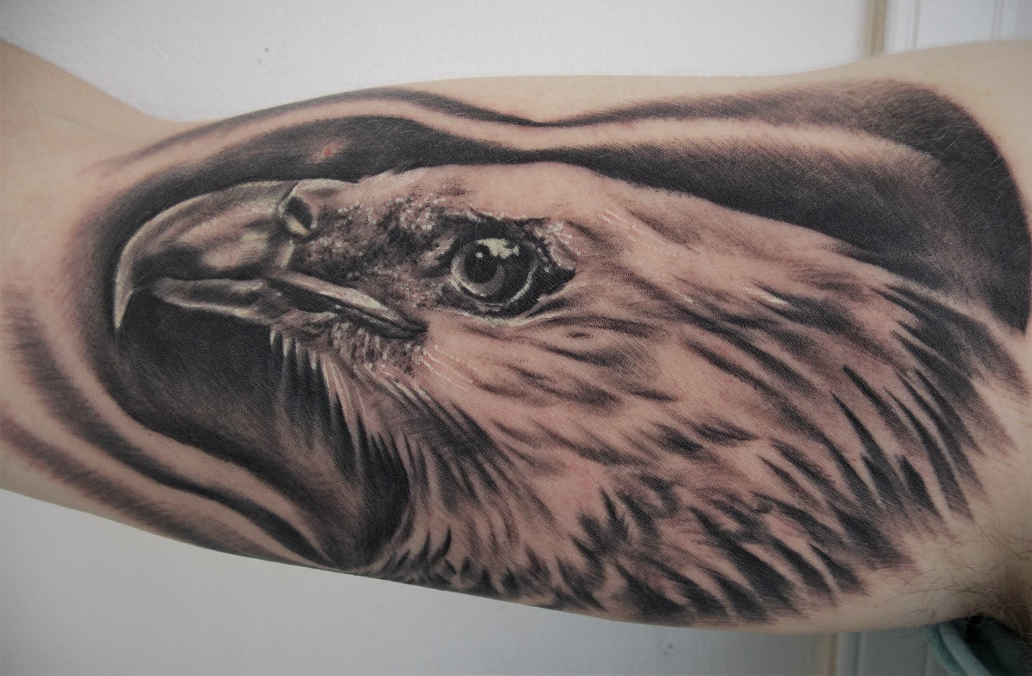 Morgaine Raven inksearch tattoo