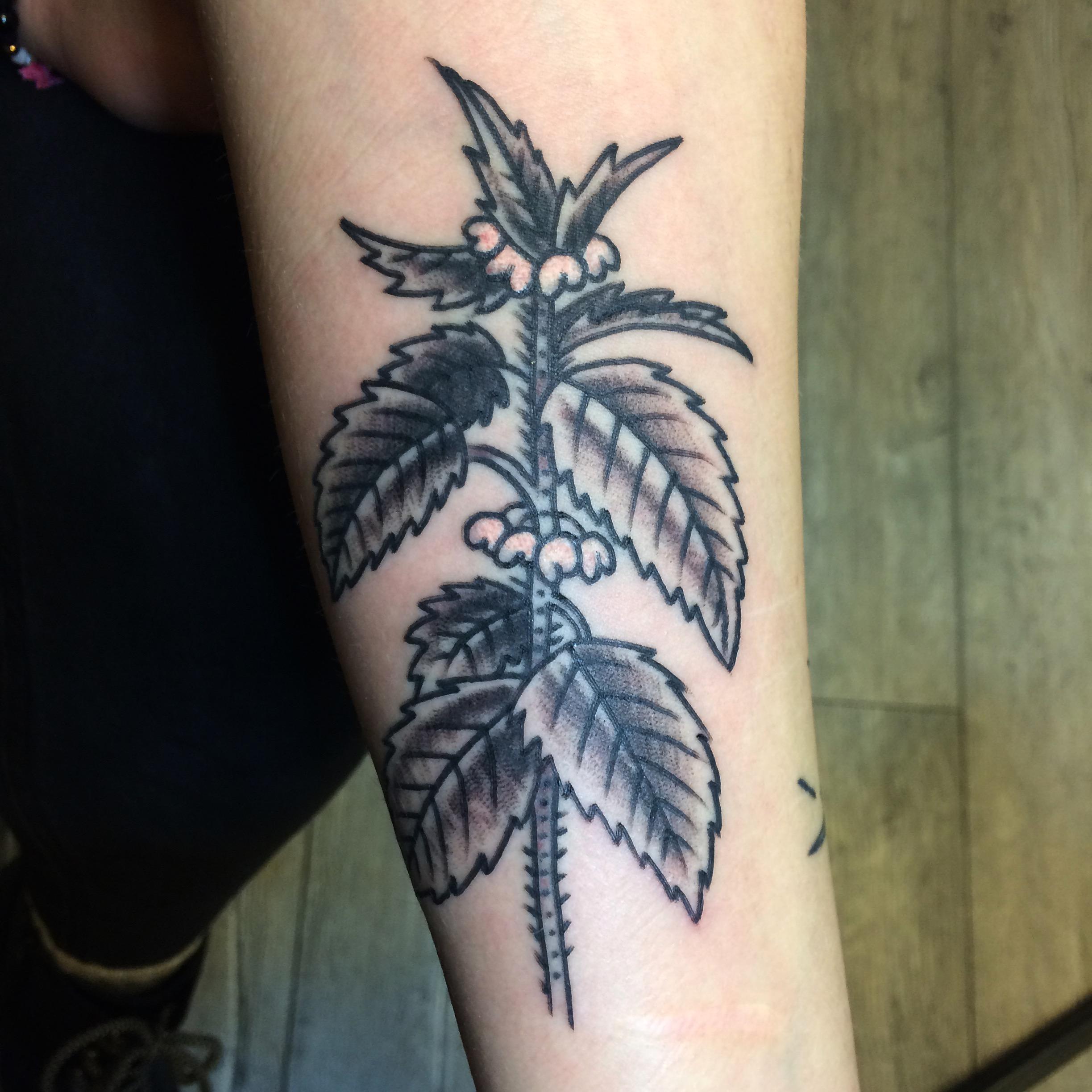 Renton Stelmach inksearch tattoo