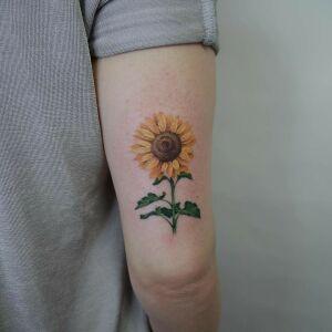 Carrot Tattoo - Dominika Rawska inksearch tattoo